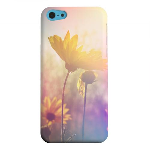 Geeks Designer Line (GDL) Apple iPhone 5C Matte Hard Back Cover - Colorful Daisy Bloom