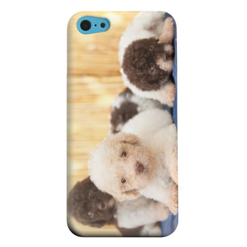 Geeks Designer Line (GDL) Apple iPhone 5C Matte Hard Back Cover - Three Buddies