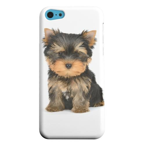 Geeks Designer Line (GDL) Apple iPhone 5C Matte Hard Back Cover - Yorkie