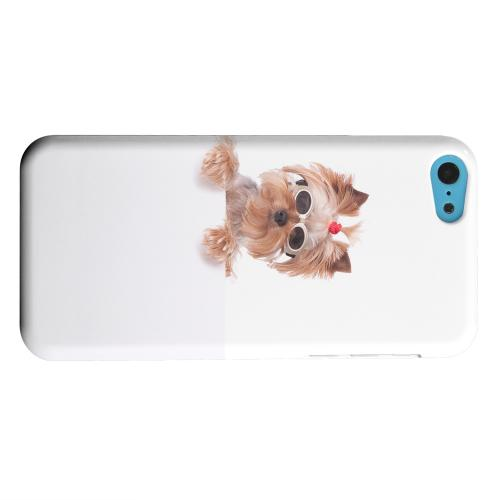 Geeks Designer Line (GDL) Apple iPhone 5C Matte Hard Back Cover - Yorkshire Terrier