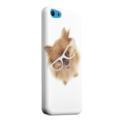Geeks Designer Line (GDL) Apple iPhone 5C Matte Hard Back Cover - Pomeranian
