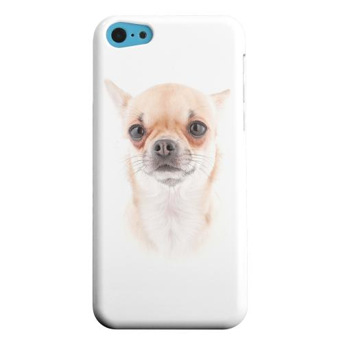Geeks Designer Line (GDL) Apple iPhone 5C Matte Hard Back Cover - Chihuahua