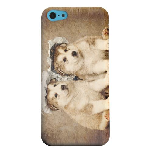 Geeks Designer Line (GDL) Apple iPhone 5C Matte Hard Back Cover - Alaskan Malamute