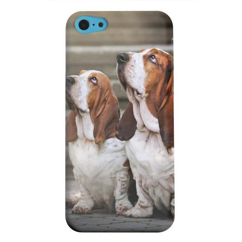 Geeks Designer Line (GDL) Apple iPhone 5C Matte Hard Back Cover - Bassett Hounds