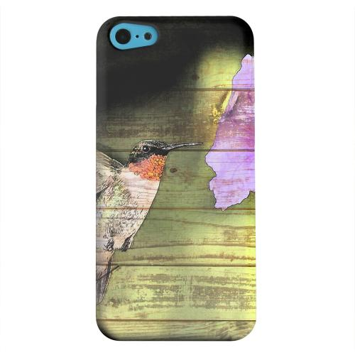Geeks Designer Line (GDL) Apple iPhone 5C Matte Hard Back Cover - Hummingbird