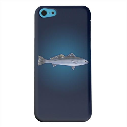 Geeks Designer Line (GDL) Apple iPhone 5C Matte Hard Back Cover - White Sea Bass