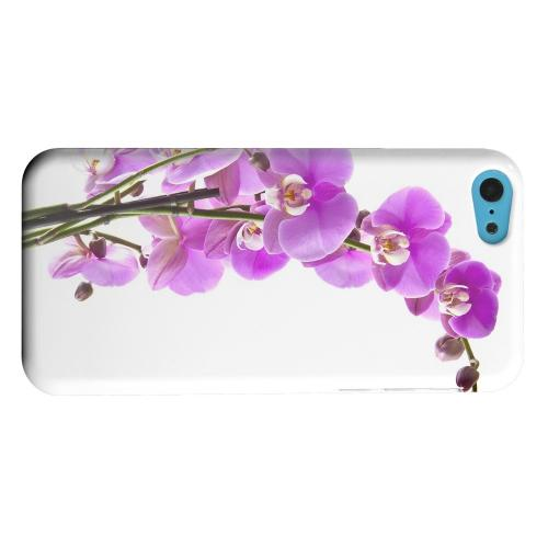 Geeks Designer Line (GDL) Apple iPhone 5C Matte Hard Back Cover - Violet Orchid Rising
