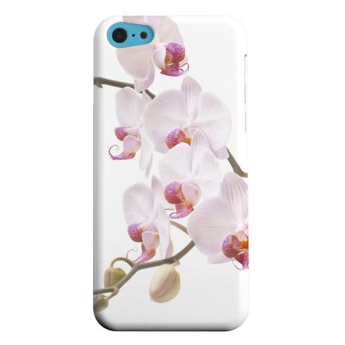 Geeks Designer Line (GDL) Apple iPhone 5C Matte Hard Back Cover - White Pink Orchid