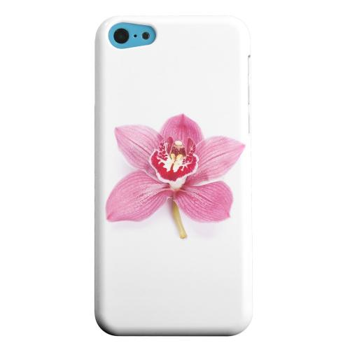Geeks Designer Line (GDL) Apple iPhone 5C Matte Hard Back Cover - Single Pink Orchid Flower