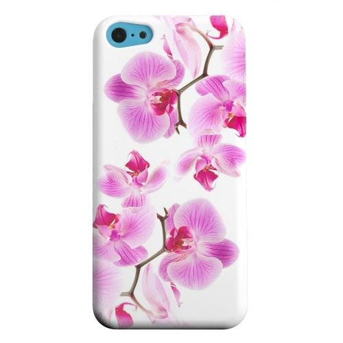 Geeks Designer Line (GDL) Apple iPhone 5C Matte Hard Back Cover - Orchids Orchids
