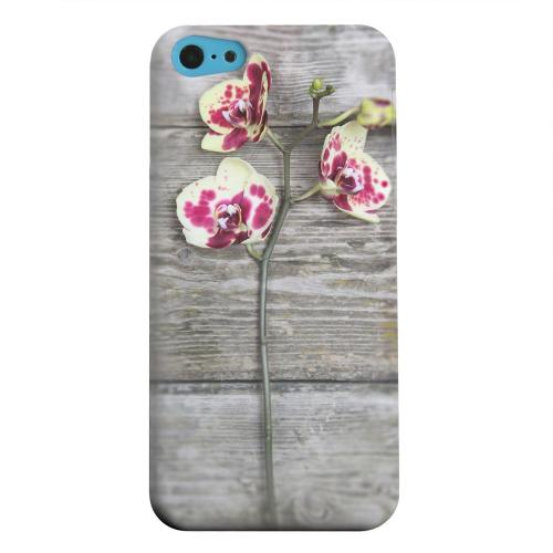 Geeks Designer Line (GDL) Apple iPhone 5C Matte Hard Back Cover - Orchid on Wood