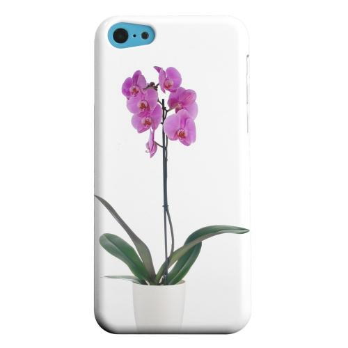 Geeks Designer Line (GDL) Apple iPhone 5C Matte Hard Back Cover - Hot Pink Orchid Plant