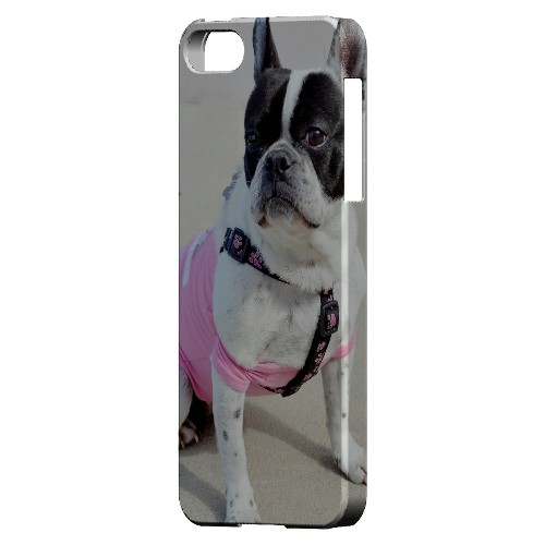 English Bulldog Mix - Geeks Designer Line Humor Series Hard Case for Apple iPhone 5/5S