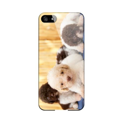 Three Buddies Impact Resistant Geeks Designer Line Slim Hard Case for Apple iPhone 5/5S