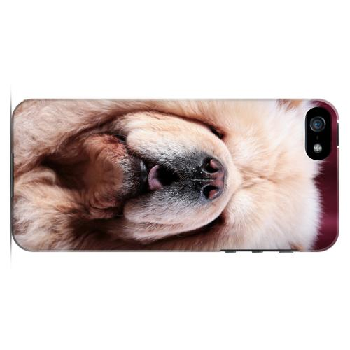 Chow Chow Impact Resistant Geeks Designer Line Slim Hard Case for Apple iPhone 5/5S