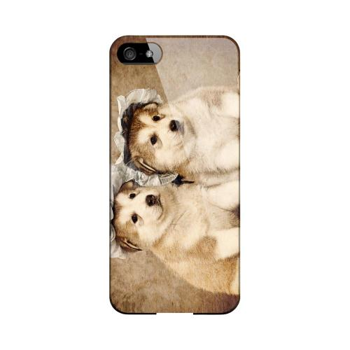 Alaskan Malamute Impact Resistant Geeks Designer Line Slim Hard Case for Apple iPhone 5/5S