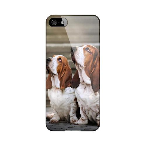 Bassett Hounds Impact Resistant Geeks Designer Line Slim Hard Case for Apple iPhone 5/5S