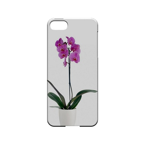 Hot Pink Orchid Plant - Geeks Designer Line Floral Series Hard Case for Apple iPhone 5/5S