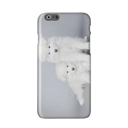 Samoyed Puppies Solid White Hard Case Cover for Apple iPhone 6 PLUS/6S PLUS (5.5 inch)