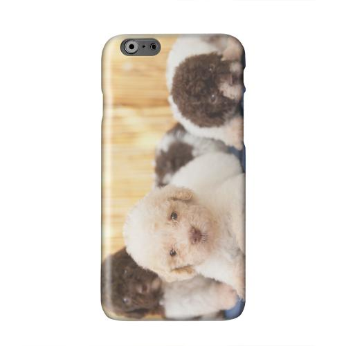 Three Buddies Solid White Hard Case Cover for Apple iPhone 6 PLUS/6S PLUS (5.5 inch)