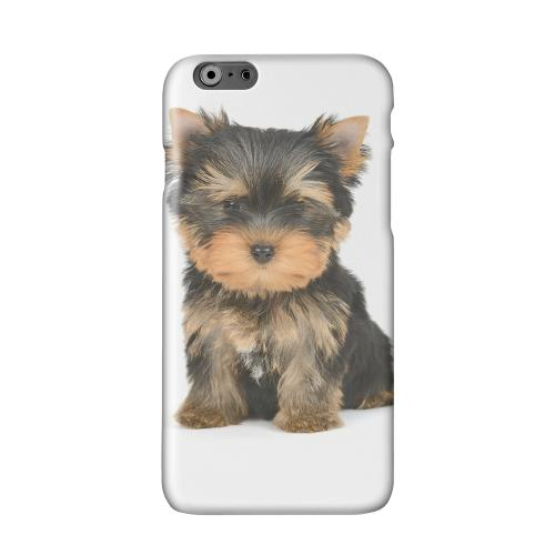 Yorkie Solid White Hard Case Cover for Apple iPhone 6 PLUS/6S PLUS (5.5 inch)