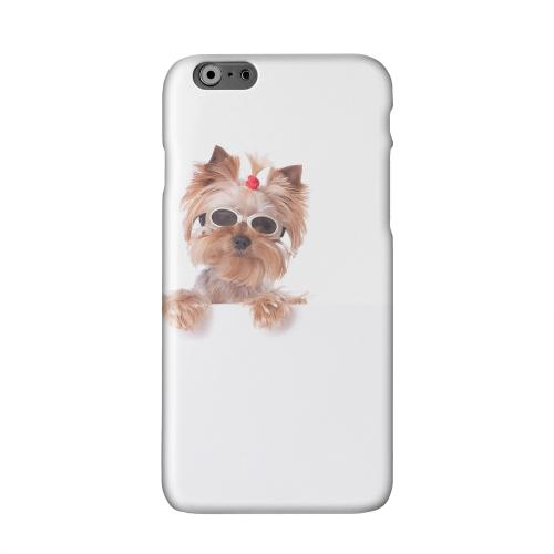 Yorkshire Terrier Solid White Hard Case Cover for Apple iPhone 6 PLUS/6S PLUS (5.5 inch)