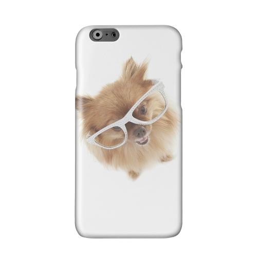 Pomeranian Solid White Hard Case Cover for Apple iPhone 6 PLUS/6S PLUS (5.5 inch)