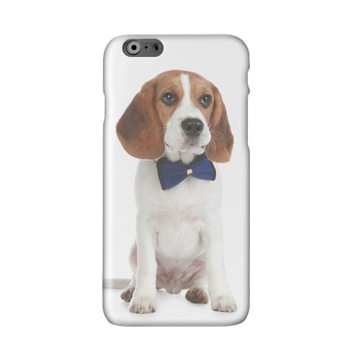 Beagle with Bow Tie Solid White Hard Case Cover for Apple iPhone 6 PLUS/6S PLUS (5.5 inch)