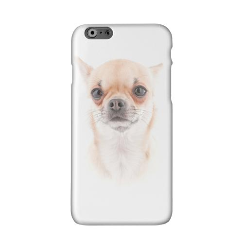 Chihuahua Solid White Hard Case Cover for Apple iPhone 6 PLUS/6S PLUS (5.5 inch)
