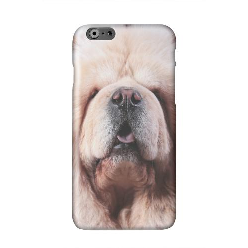 Chow Chow Solid White Hard Case Cover for Apple iPhone 6 PLUS/6S PLUS (5.5 inch)