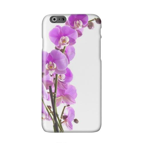 Violet Orchid Rising Solid White Hard Case Cover for Apple iPhone 6 PLUS/6S PLUS (5.5 inch)