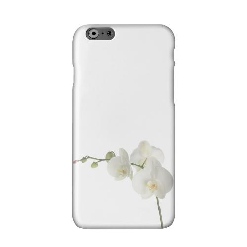 Simple White Orchid Solid White Hard Case Cover for Apple iPhone 6 PLUS/6S PLUS (5.5 inch)