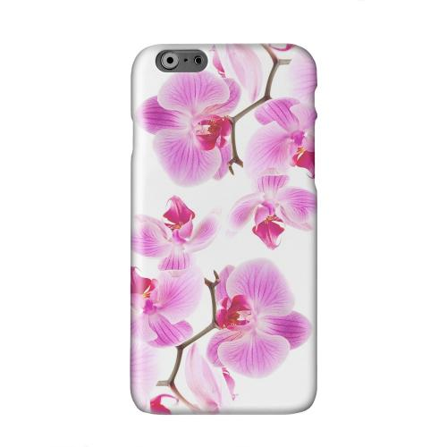 Orchids Orchids Solid White Hard Case Cover for Apple iPhone 6 PLUS/6S PLUS (5.5 inch)