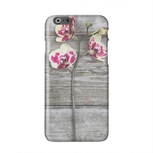 Orchid on Wood Solid White Hard Case Cover for Apple iPhone 6 PLUS/6S PLUS (5.5 inch)