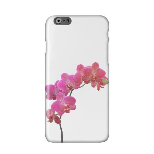Hot Pink Orchid Branch Solid White Hard Case Cover for Apple iPhone 6 Plus