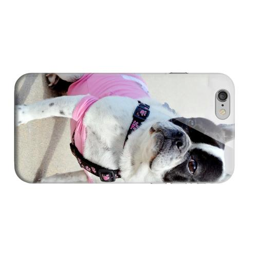 Geeks Designer Line (GDL) Apple iPhone 6 Matte Hard Back Cover - English Bulldog Mix