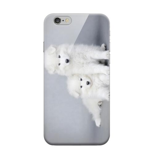 Geeks Designer Line (GDL) Apple iPhone 6 Matte Hard Back Cover - Samoyed Puppies