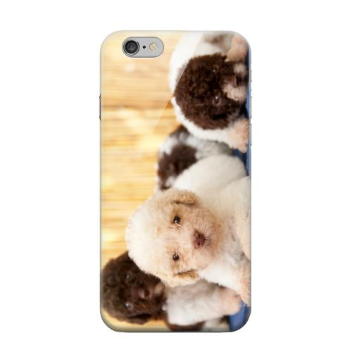Geeks Designer Line (GDL) Apple iPhone 6 Matte Hard Back Cover - Three Buddies