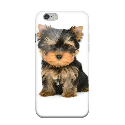 Geeks Designer Line (GDL) Apple iPhone 6 Matte Hard Back Cover - Yorkie