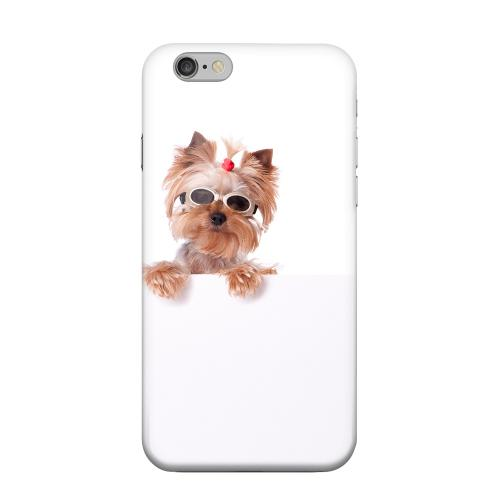 Geeks Designer Line (GDL) Apple iPhone 6 Matte Hard Back Cover - Yorkshire Terrier