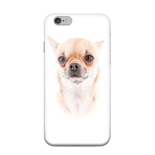 Geeks Designer Line (GDL) Apple iPhone 6 Matte Hard Back Cover - Chihuahua