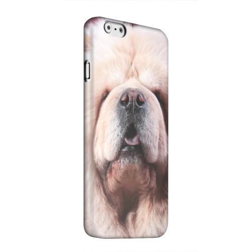 Geeks Designer Line (GDL) Apple iPhone 6 Matte Hard Back Cover - Chow Chow