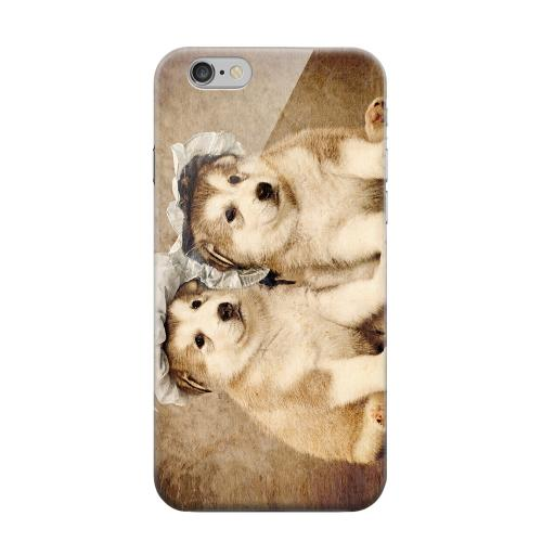 Geeks Designer Line (GDL) Apple iPhone 6 Matte Hard Back Cover - Alaskan Malamute