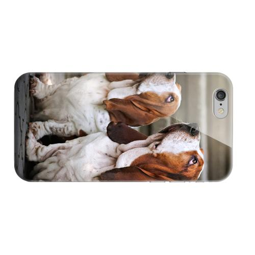 Geeks Designer Line (GDL) Apple iPhone 6 Matte Hard Back Cover - Bassett Hounds