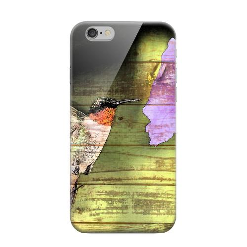 Geeks Designer Line (GDL) Apple iPhone 6 Matte Hard Back Cover - Hummingbird