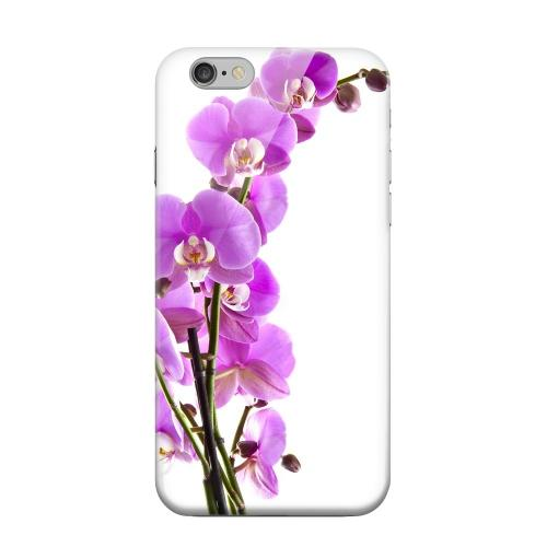Geeks Designer Line (GDL) Apple iPhone 6 Matte Hard Back Cover - Violet Orchid Rising