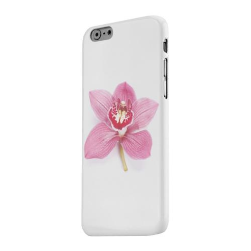 Geeks Designer Line (GDL) Apple iPhone 6 Matte Hard Back Cover - Single Pink Orchid Flower