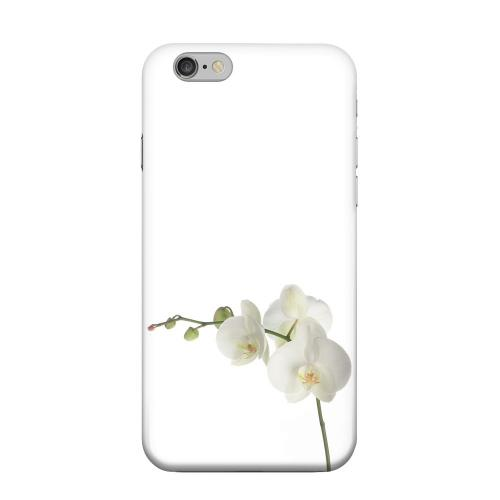 Geeks Designer Line (GDL) Apple iPhone 6 Matte Hard Back Cover - Simple White Orchid