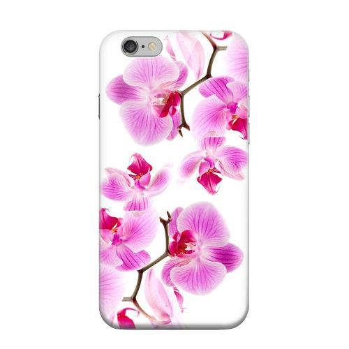 Geeks Designer Line (GDL) Apple iPhone 6 Matte Hard Back Cover - Orchids Orchids