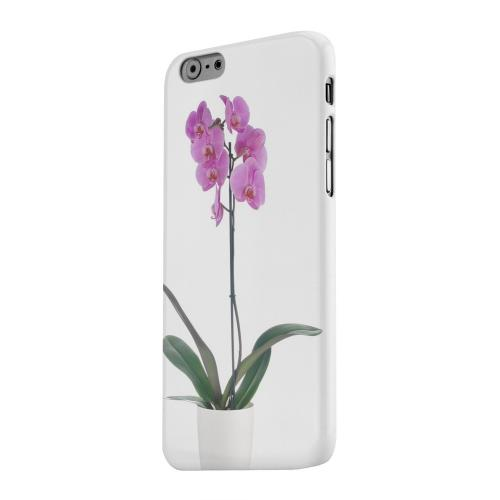 Geeks Designer Line (GDL) Apple iPhone 6 Matte Hard Back Cover - Hot Pink Orchid Plant